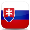 Basic VPN static IP location flag Slovakia